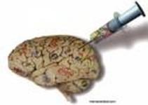 cerebromeme-destaque