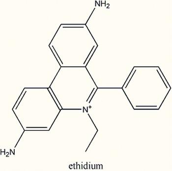 etidium-dest