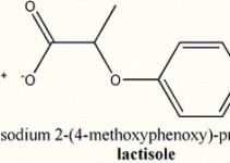 lactisole-des