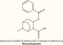 benzoilecgonina-destaque