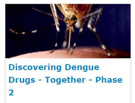 mosquito e texto em inglês