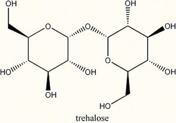 trehalose-estrutura