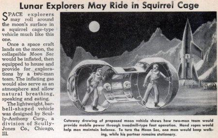 gaiola esquilo exploracao lua