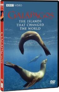 dvd amazon