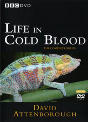 animais de sangue frio documentário