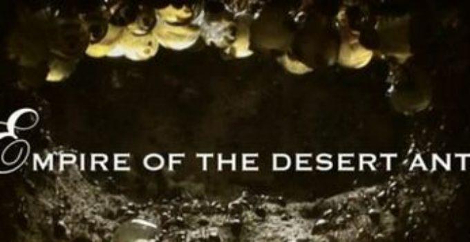 logo do documentário