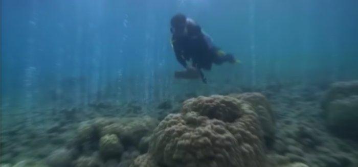 gás carbônico saindo do fundo marinho