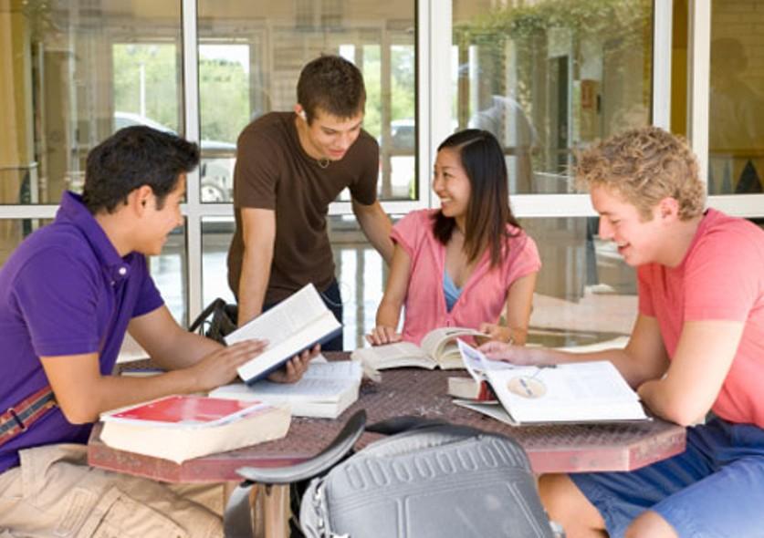 pessoas estudando em livros