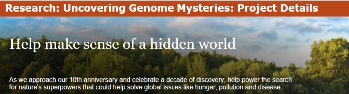 captura de tela do site do world grid